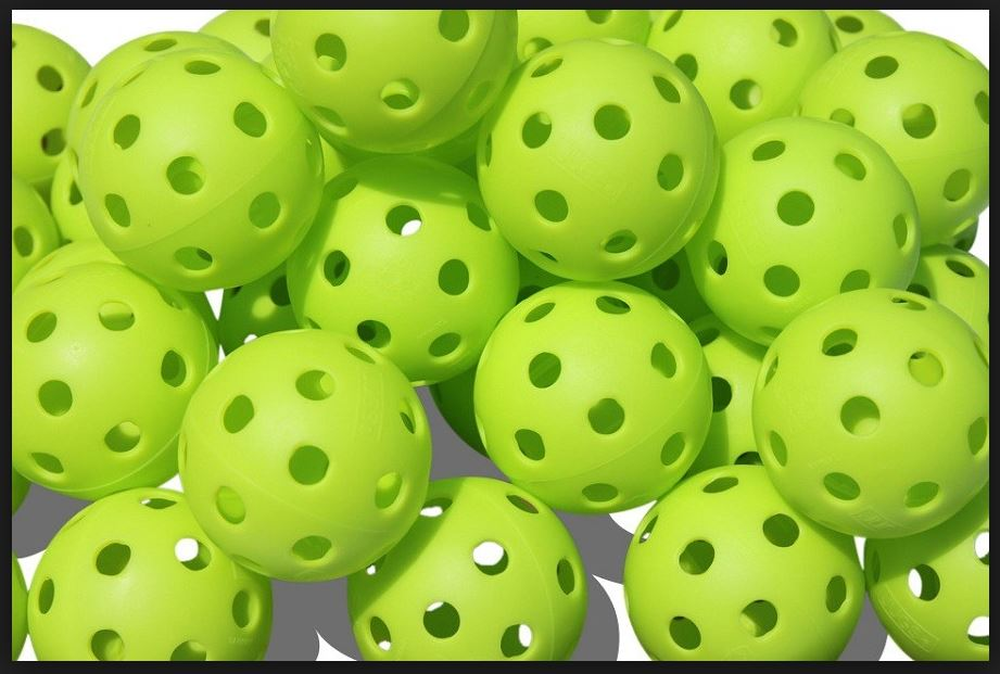 Image result for All about Pickle balls